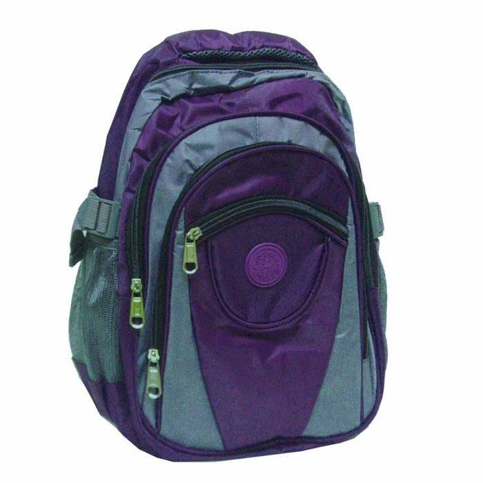 【葳爾登】JOCKEY【小型】後背包登山包可放小電腦公事包運動背包護脊書包JK026紫色