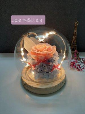 Joanne&Linda與愛系列 粉玫瑰永生花 愛心暖光燈串玻璃罩夜燈擺飾       尺寸13×13公分