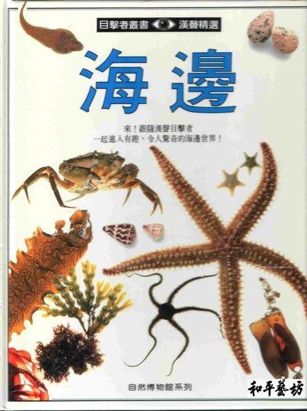 漢聲文化~海邊-自然目擊者叢書之9(全新庫存書)