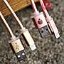 出清特價!蘋果 Lightning 8pin USB 200&30...
