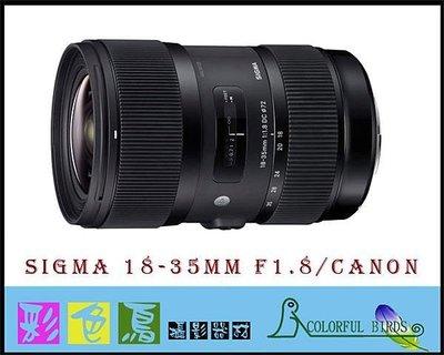 彩色鳥(相機出租 租相機 租鏡頭 鏡頭出租) Sigma 18-35mm f1.8 (for Canon) 70D 台北市
