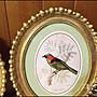 歐式古典風 仿古金箔框小鳥橢圓壁飾小品 共4款波麗金框綠色鳥語花香掛畫吊飾牆壁裝飾品壁貼古典鄉村風祝賀送禮品【歐舍家飾】