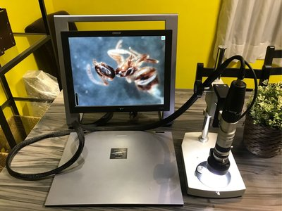 浩宇光學  omron vcr-800 數位顯微鏡