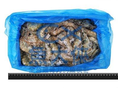 1C4B【魚大俠】SP022特美生白蝦50/60 保證實重1.15kg #4(白蝦 草蝦 泰國蝦 甜蝦 龍蝦 天使紅蝦)