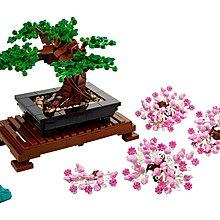 【1/5到貨】台中 *宏富玩具*【2021.1月新品】LEGO 樂高積木 Creator Expert 10281 盆景