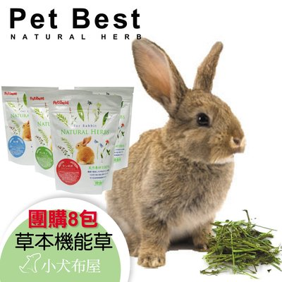 ☆小犬布屋【PetBest】團購8包*寵物兔健康草本機能草*推薦給營養不良兔子使用*兔子保健*兔子營養食品
