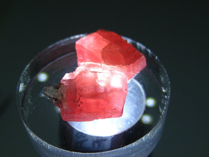 美國 天然無處理 高品質 薔薇輝石 菱錳礦【Texture &  Nobleness 低調與奢華】