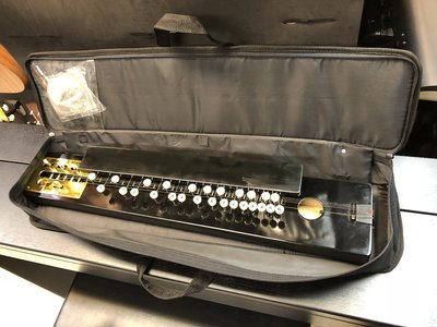 【金聲樂器】全新 中山琴 大正琴
