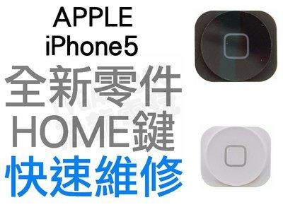 APPLE 蘋果 iPhone5 HOME鍵外蓋 返回鍵 外蓋 手機維修 全新零件 專業維修【台中恐龍電玩】