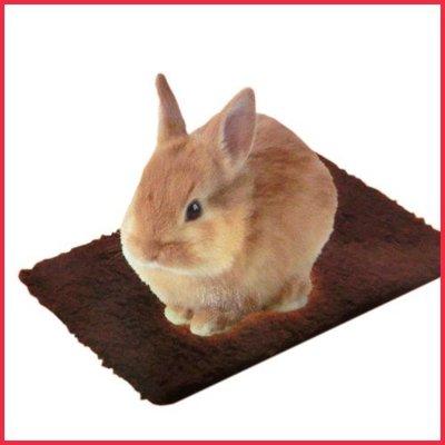 48小時出貨*WANG*《日本MARUKAN》兔用快速暖墊-棕色 MR-828 / 保暖墊寒冬必備