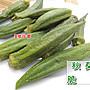 3號味蕾 量販團購網~乾燥 黃秋葵脆片800公克量販價《全素》 另有香菇脆片、芋頭條