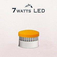 【ambion 新版升級】 塩光 多款玫瑰鹽燈適用7W-LED燈組|雅緻白| 現貨