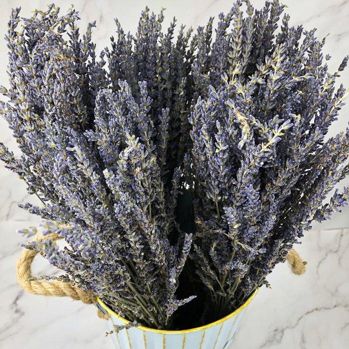 進口乾燥天然薰衣草:英國藍-乾燥花圈 乾燥花束 不凋花 拍照道具 室內擺飾 乾燥花材 裝飾插花鄉村風-3元/支