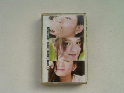///李仔糖明星錄*1994年趙詠華-我的愛.我的夢.我的家(s6823)