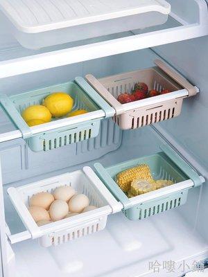 哈嘍小鋪 冰箱隔板層收納架廚房免打孔多用保鮮掛架冰箱架分層收納架置物架