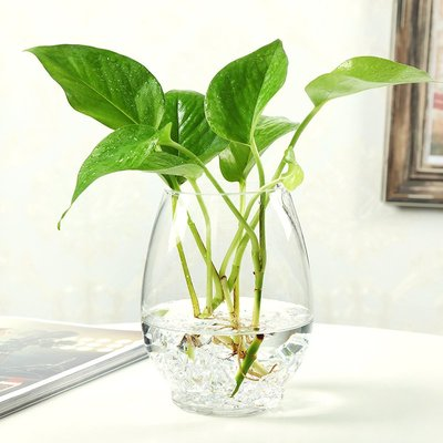 歐式花瓶特大號玻璃花瓶水培植物富貴竹綠籮透明創意花瓶簡約小清新插花瓶