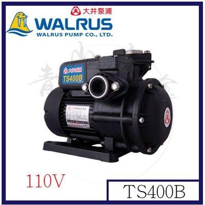 『青山六金』附發票 TS400B 1/2HP不生鏽抽水機 抽海水 不生銹抽水馬達 無聲抽水機 靜音抽水馬達 TS800B
