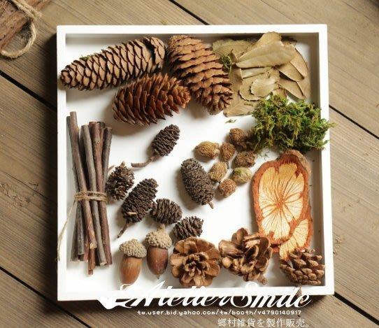 [ Atelier Smile ] 鄉村雜貨 復古作舊 天然微景觀 松果 橡果 小樹枝 材料包 #聖誕裝飾 (現貨)