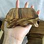木底座  供佛座 小木座 實木底座 正方形木座 多肉植物底座