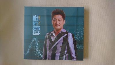 【鳳姐嚴選二手唱片】楊哲 咱的愛 CD+DVD 全新未拆 豪記