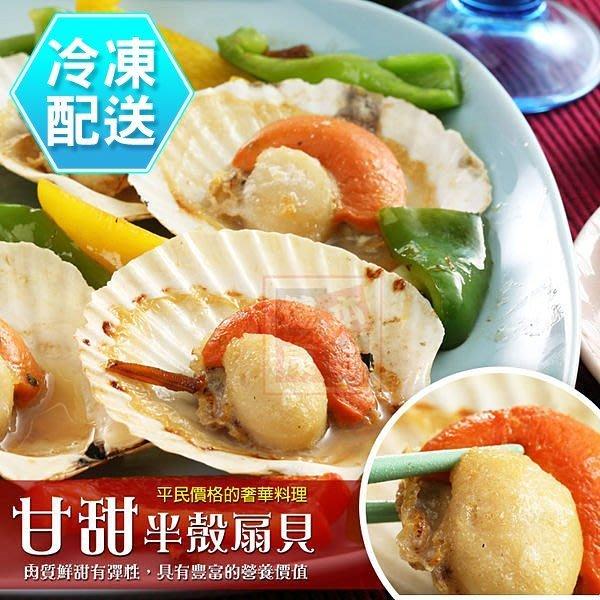 甘甜半殼扇貝 海鮮烤肉 冷凍配送 [CO00353] 健康本味