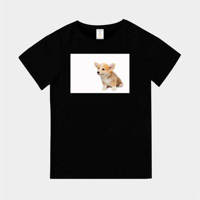 T365 MIT 親子 童裝 情侶 T恤 T-shirt 短T 狗 DOG 汪星人 Corgi 柯基犬 柯基 科基 毛孩