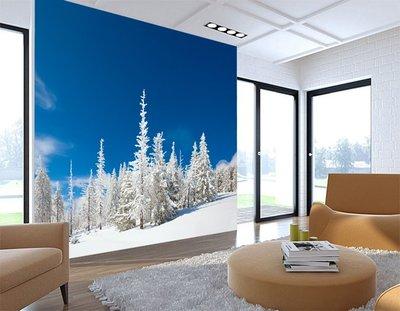 客製化壁貼 店面保障 編號F-368 高山雪景 壁紙 牆貼 牆紙 壁畫 星瑞 shing ruei
