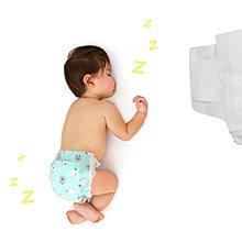 【美國直購】The Honest 夜間 環保 有機 無毒 嬰兒尿布 -瞌睡綿羊