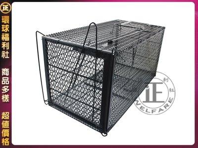環球ⓐ廚房用品☞腳踏式捕貍籠(加長加厚型)台灣製 捕鼠籠 捕貓籠 補狸籠 老鼠籠 誘捕籠 捉貓籠 捕獸籠