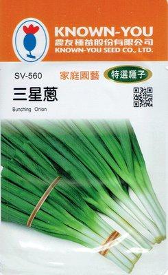 四季園 三星蔥 Bunching Onion(sv-560) 四季蔥【蔬菜種子】農友種苗特選種子 每包約2公克