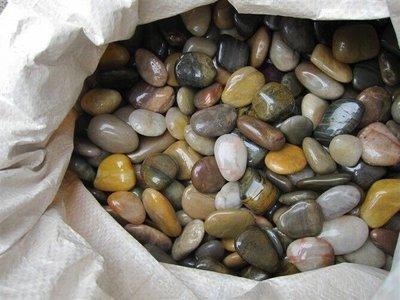 ╭☆雨過天青☆╮特級五彩雨花石 黃雨花石 黑花崗 板岩抿石子 花器 石桌 1太空包了以上優惠~ 台中市