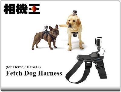 ☆相機王☆GoPro Fetch Dog Harness 寵物頸帶〔Hero3 Hero3+ 適用〕現貨 .