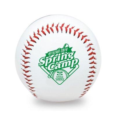 貳拾肆棒球--日本帶回日職棒軟銀鷹宮崎春訓紀念球