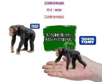 日本散貨玩具 四肢可動小猩猩 仿真叢林靈長類動物公仔 可動人偶