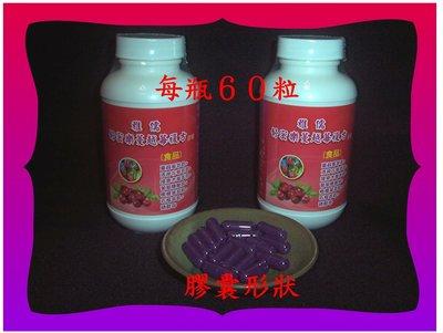 60粒50倍濃縮專利蔓越莓萃取+專利洛...