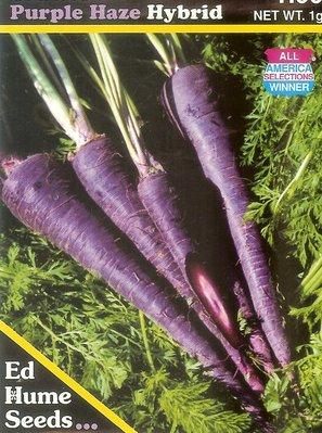 ~大包裝蔬菜種子~紫霧胡蘿蔔,這是得獎的品種,很甜,種植70天可收成!