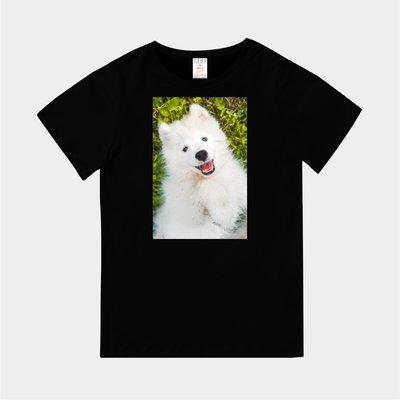 T365 MIT 親子 童裝 情侶 T恤 T-shirt 短T 狗 DOG 汪星人 薩摩耶 Samoyed 毛孩 毛小孩