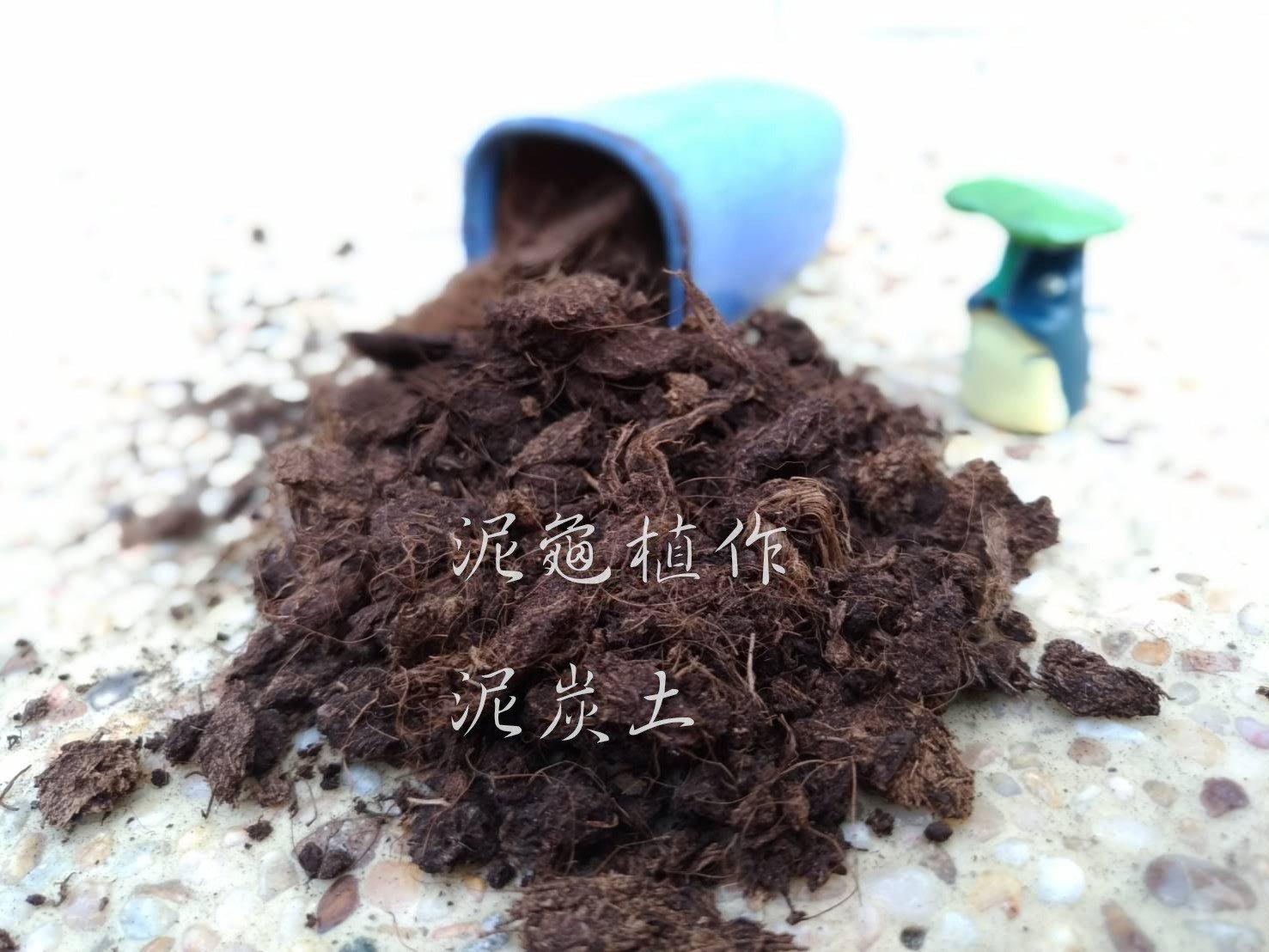 【泥龜☘ 泥炭土_300ml】德國進口泥碳土 育苗 多肉植物 仙人掌 室內植物 盆栽 花卉 園藝 資材 介質