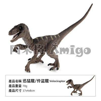阿米格Amigo│迅猛龍 伶盜龍 速龍 恐龍 侏羅紀世界 仿真動物模型 科教 教學 公仔 擺設 玩具 兒童 幼兒 禮物