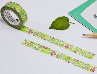 紙膠帶 菊水KIKUSUI 上課一條蟲 分裝100cm