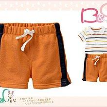 【B& G童裝】正品美國進口GAP藍邊橘色短褲12-18-24mos