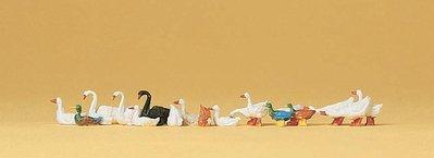 傑仲 (有發票) 博蘭 公司貨 Preiser 動物組 Ducks,geese and swans 14167 HO