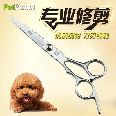 小型寵物梳理 寵物狗狗剪 6寸直剪剪刀寵物剪刀