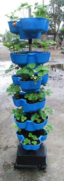 *強力設計*革命性立體植栽花盆,草莓塔、蔬菜塔,適合都市農夫陽台有機種植、農場大量栽種,栽培塔/立體種菜箱/盆栽園藝資材