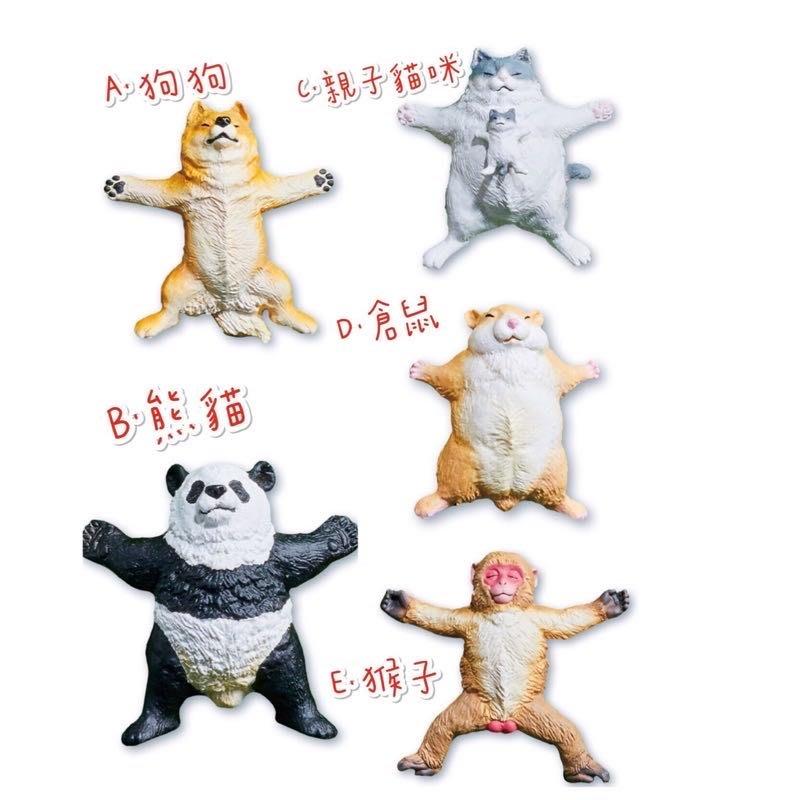 (單款販售 )現貨 BUSHIROAD 轉蛋 扭蛋 TAMA-KYU 大字仰躺動物 仰躺 大字 柴犬 貓 熊貓  猴子 單款 整套販售~現貨優惠中|