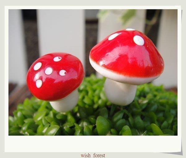 WISH  FOREST【香菇。迷您款0.8公分】。園藝小物。點綴植栽/豐富您的小花園