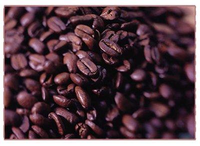 【ROSE 玫瑰咖啡館】綜合咖啡豆225g 半磅裝 新鮮烘培