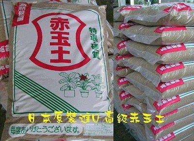 日本原裝 硬質赤玉土(18L) 多肉土 多肉顆粒土 多肉培養土 盆栽土 花土樹土花肥杜鵑茶花仙人掌的最佳介質鵝卵石批發