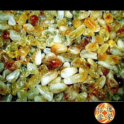 免運 紅運當家  天然招財黃水晶碎石(粗顆粒) 淨重600公克 ,放入發財樹或晶洞內,招旺財運