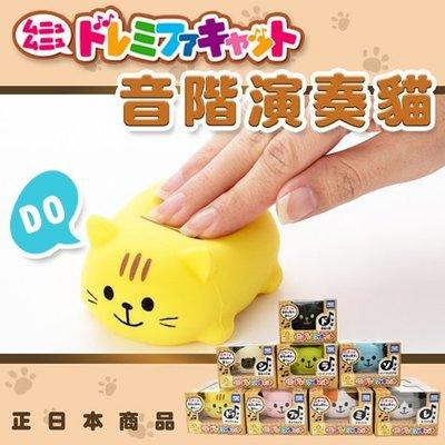 【鉛筆巴士】TAKARA TOMY 貓咪演奏器(單隻) 日本原裝-現貨 音階貓 音樂玩具 電子樂器JP07026